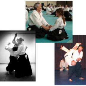 La naturaleza del Aikido lo hace adecuado para todo el mundo