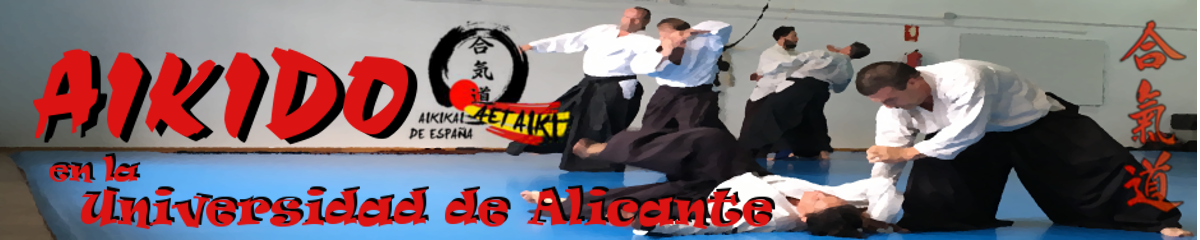 Aikido Universidad de Alicante – San Vicente