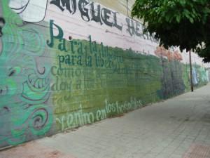 calle de wenceslao fernandez florez (14)