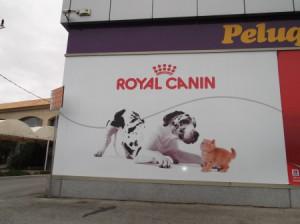 4 anuncio royal canine
