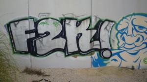 F2K convertida