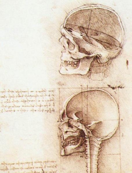 Leonardo Da Vinci «