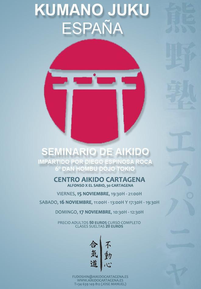Curso Aikido Cartagena 2013