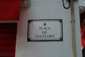 Plaça de les Flors
