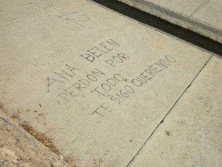 Este graffiti, hace referencia a que una persona se está disculpando por algo malo que habrá hecho, puede ser que no ha sabido querer a esta chica, no le ha […]