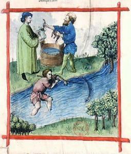 Tacuinum_Sanitatis-fishing_lamprey