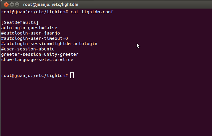 /etc/lightdm/lightdm.conf file
