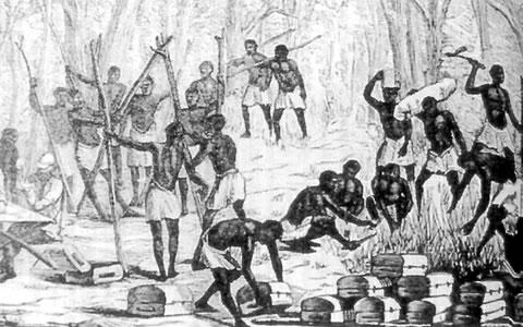 Foto de esclavitud madura gratis