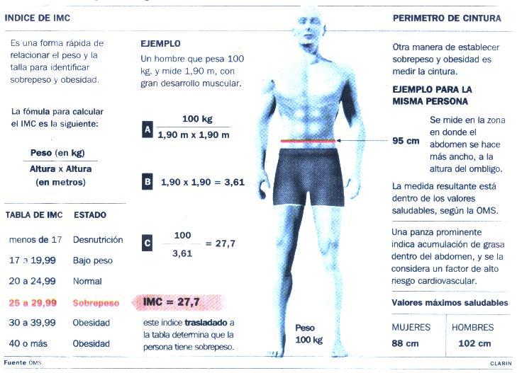 indice de masa corporal. ¿QUE ES EL INDICE DE MASA